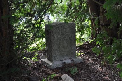 A Hidden Stone